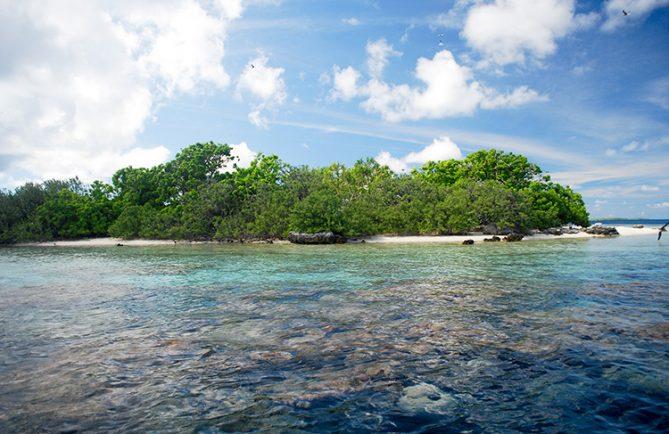 Motu aux oiseaux de Aratika © Tahiti Heritage