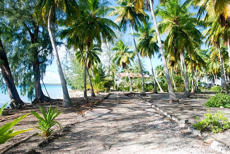 Route principale de l'ancien village de Paparara, Aratika