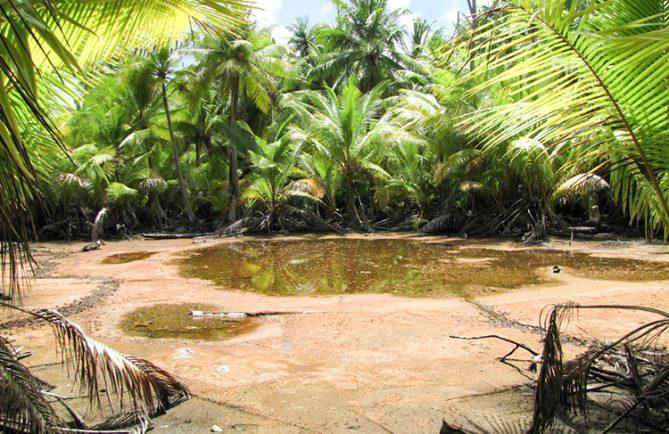 Etang sacré à l'ouest de Ahe, Tuamotu.
