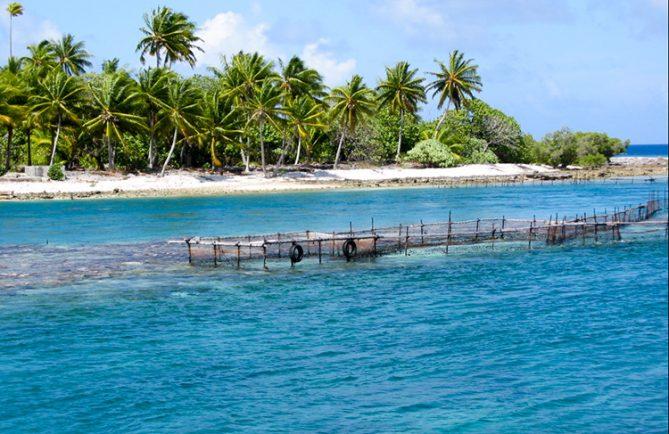 Parc à poissons de la passe Tamaketa, Aratika © Tahiti Heritage