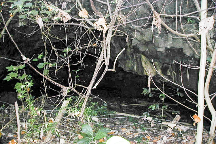 Grotte Ana o Tiki d'Aukena, Gambier © Tahiti Heritage