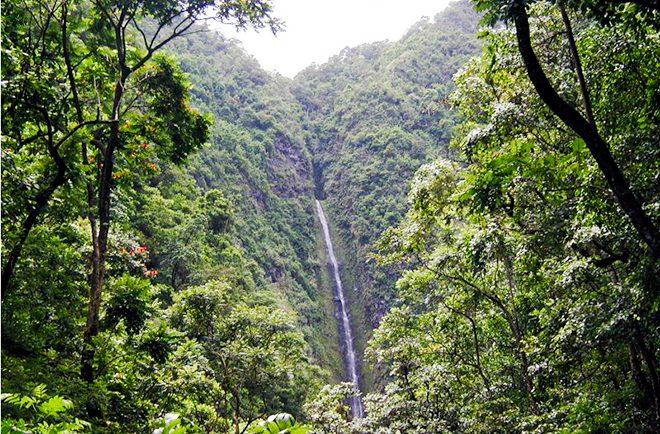 Cascade de la vallée de Matatia à Punaauia