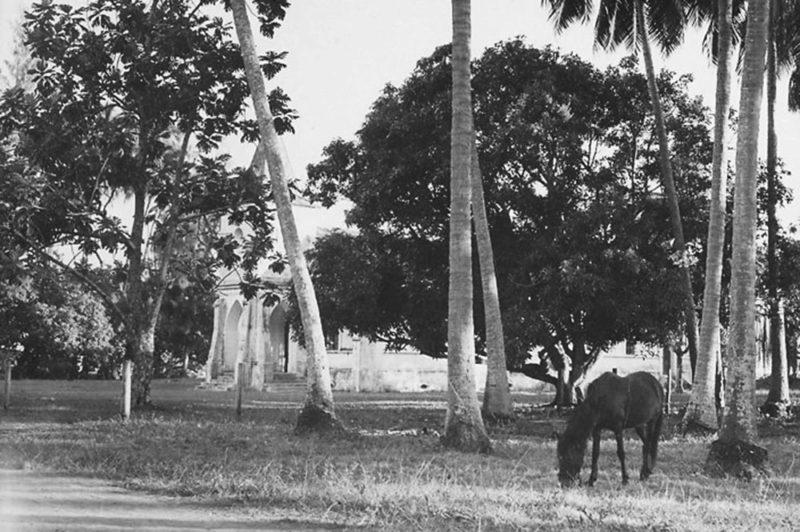 Papetoai, île de Moorea en 1956. Photo G Fabre