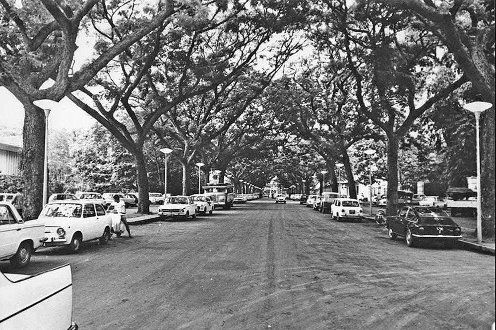 Avenue Bruat à Papeete en 1960