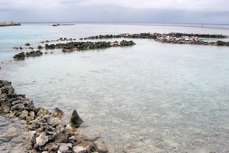 Parc à poissons d'Araka