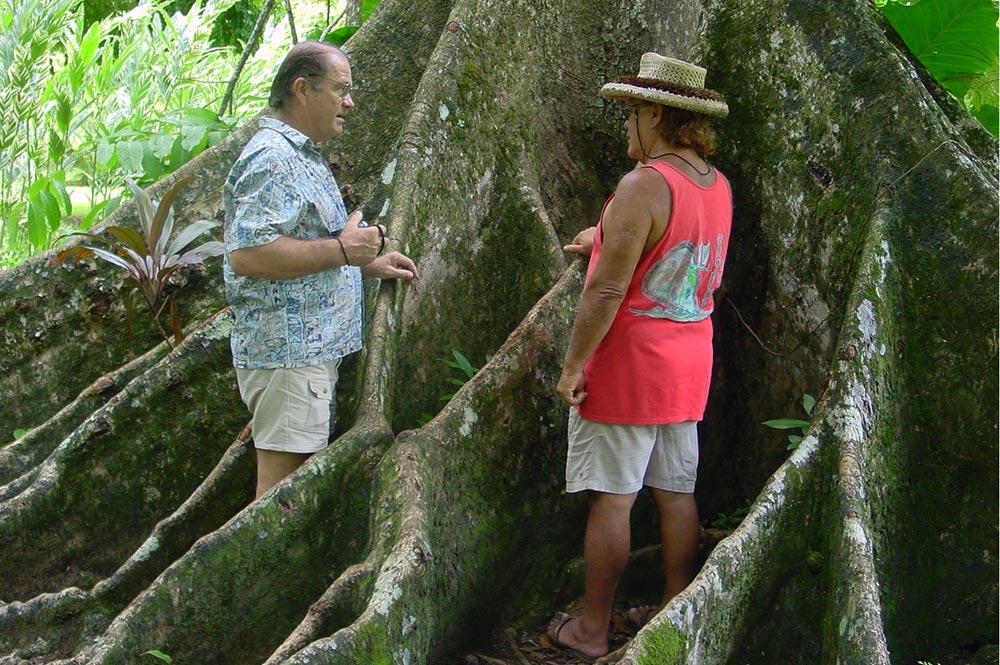 Dick Johnson et Talo Pambrun au pied du Parkia du jardin botanique Harrison Smith