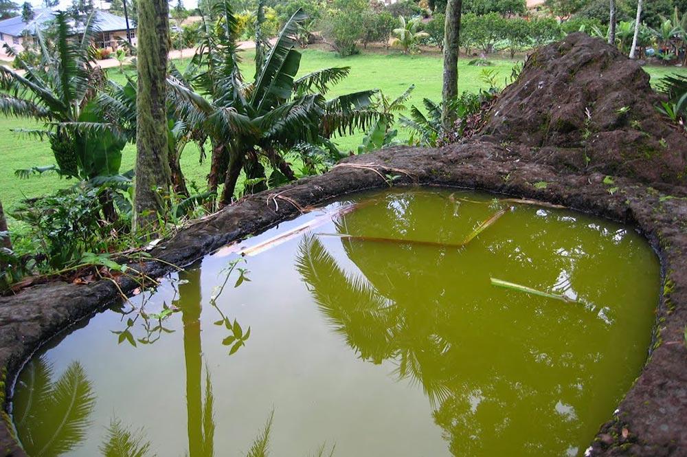 Bain de la Reine, Po'atu o Kame, Rouru, Mangareva. Photo Vuillemoz