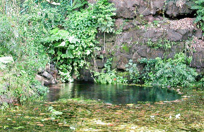Bain de la reine, Arue Tahiti