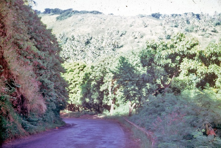 Ancienne route de la colline du Tahara'a