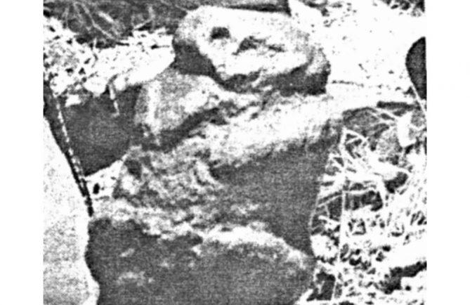 Tiki Tapuna de Paea, 1979