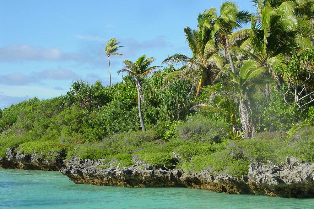 Motu à Tematahoa, au sud de l'atoll de Anaa