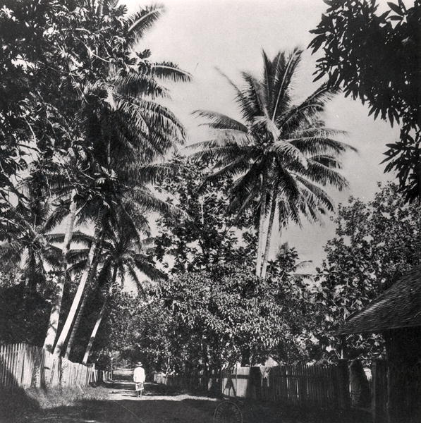Une route de Papeete (Tahiti) en 1882, coll. Vahineitaria