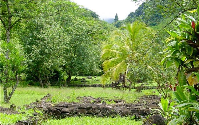 Plateforme de tir à l'arc à Farehape, vallée de papenoo. © Tahiti Heritage