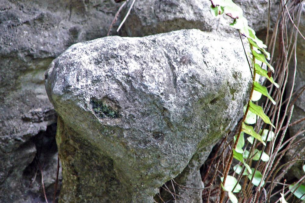 Rocher de l' extraterrestre E.T de la grotte Ae'o à Rututu.