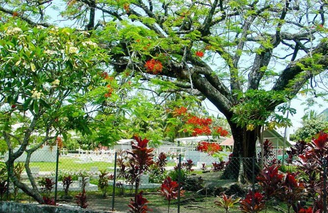 Cimetière de Tautira, Tahiti © Tahiti Heritage
