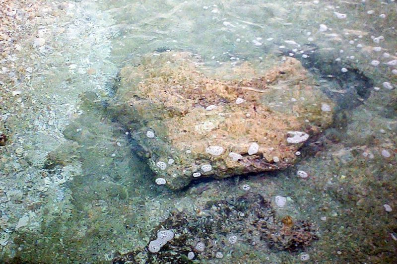 Pierre Tua poto ou Matira de Takapoto © Tahiti Heritage