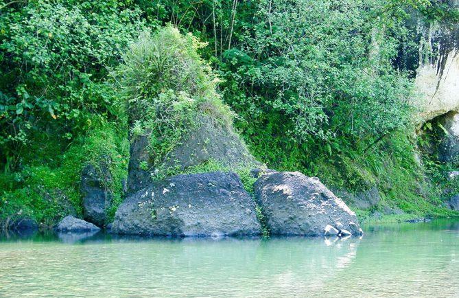 Pierre Pona Roa, dans la moyenne vallée de la Papenoo. © Tahiti Heritage