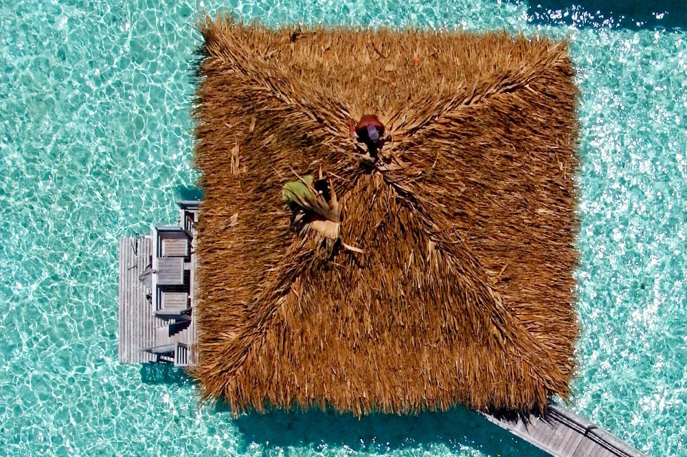 Toiture de bungalow en pandanus. Photo Pierre Lesage