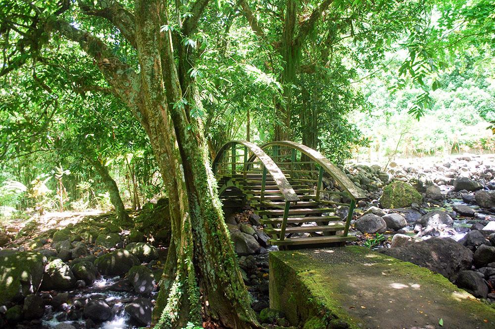 Pont du sentier des trois cascades, Hitiaa © Tahiti Heritage