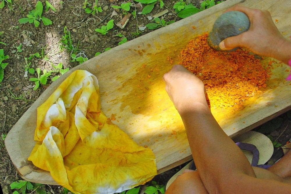 Teinture jaune obtenue avec le Nono de Tahiti, Morinda citrifolia. © TAHITI HERITAGE