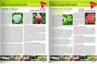 Pomme cannelle, Opuhi, Citron vert, Ixora