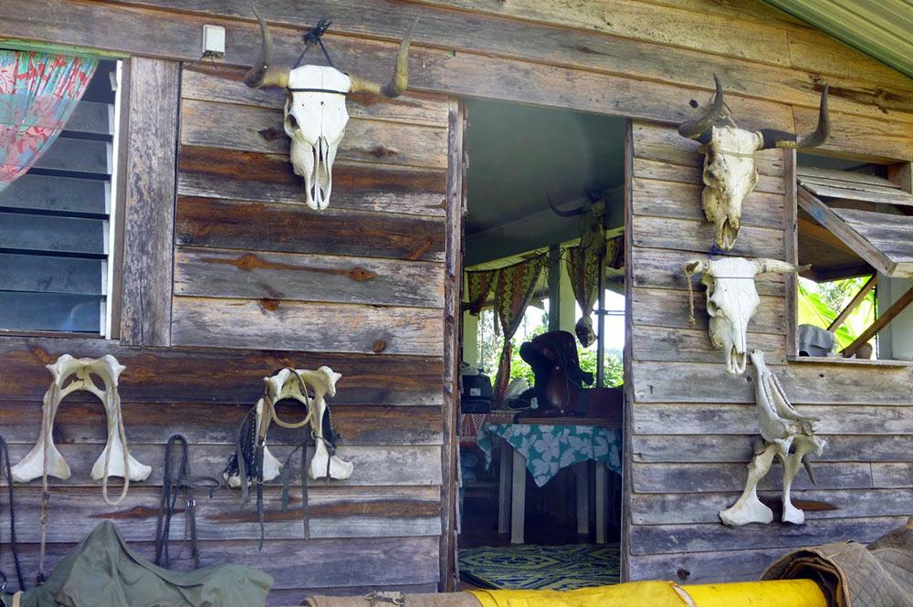 Ranch du plateau de Toovi