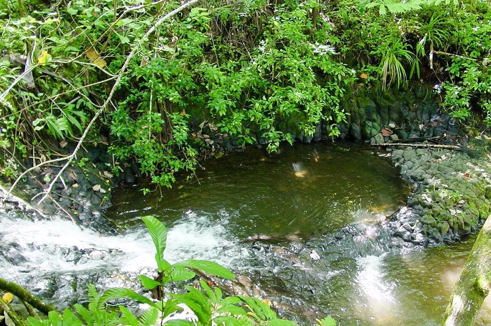 Vasques situées au dessus de la cascade de Vaihi, Faaone.