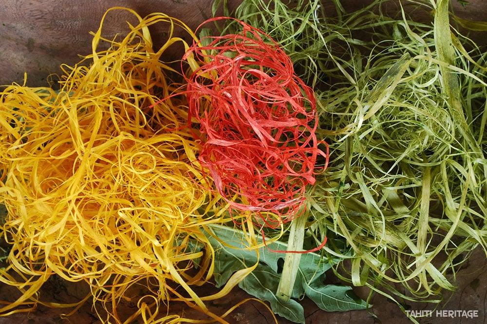 Des plantes polynésiennes tinctoriales pour colorier