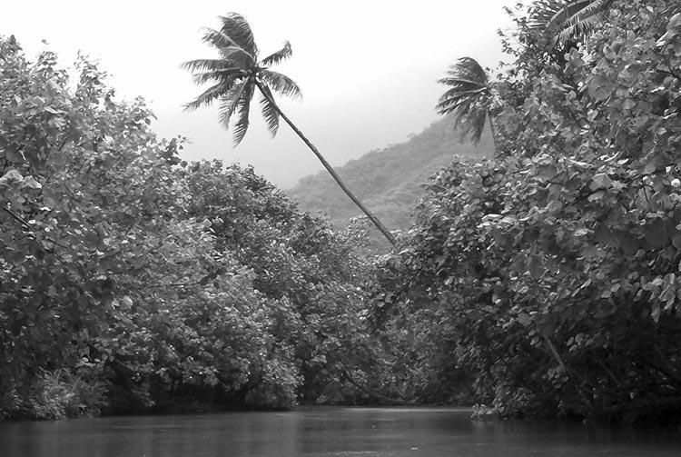 Rivière Faaroa à Raiatea