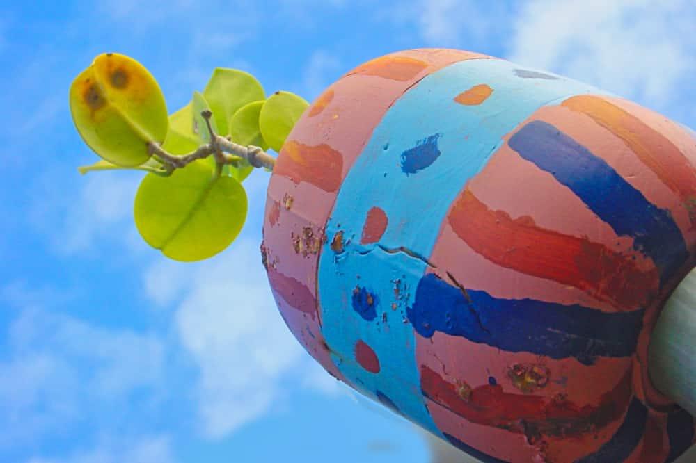Bouées colorées de Maro-Piera à Anaa